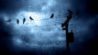 Đêm nay có mưa rơi [cover AC&M]