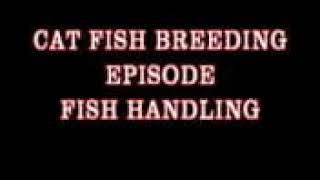 Fish handling with corpsmembers
