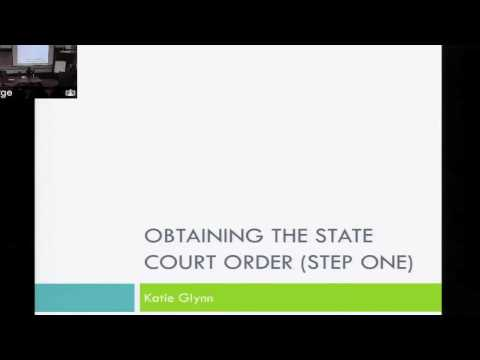 State Court Representation for SIJS (4/5)