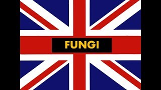 """How to pronounce """"  Fungi """" in English -Authentic British accent"""