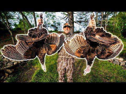 URBAN Turkey Hunting (10 Yard HEADSHOT) With A Bow
