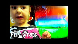 RAINBOW JAR SCIENCE EXPERIMENT | Day 2026 - TheFunnyrats Family Vlog