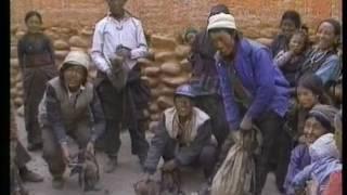 NHKスペシャル『奥ヒマラヤ禁断の王国・ムスタン』調査報告