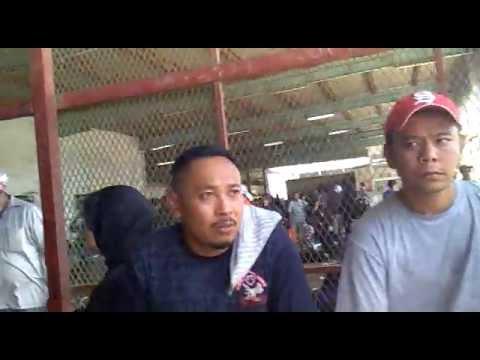 ANTRIAN, AMNESTY .SPLP TIDAK DI TANGAPI PIHAK JAWAJAT.19 - 06 - TKI ...