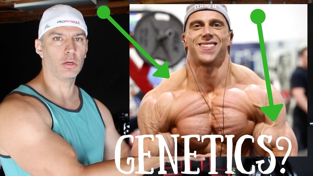 Do You Have Good Muscle Building Genetics Youtube