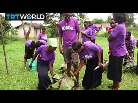 Money Talks: Uganda's KadAfrica teaches women farming skills