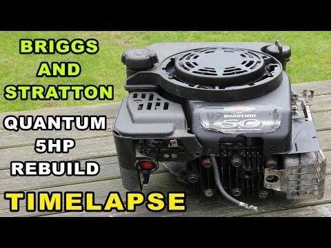 Briggs and Stratton Engine Rebuild | Quantum 5hp Small Engine Timelapse