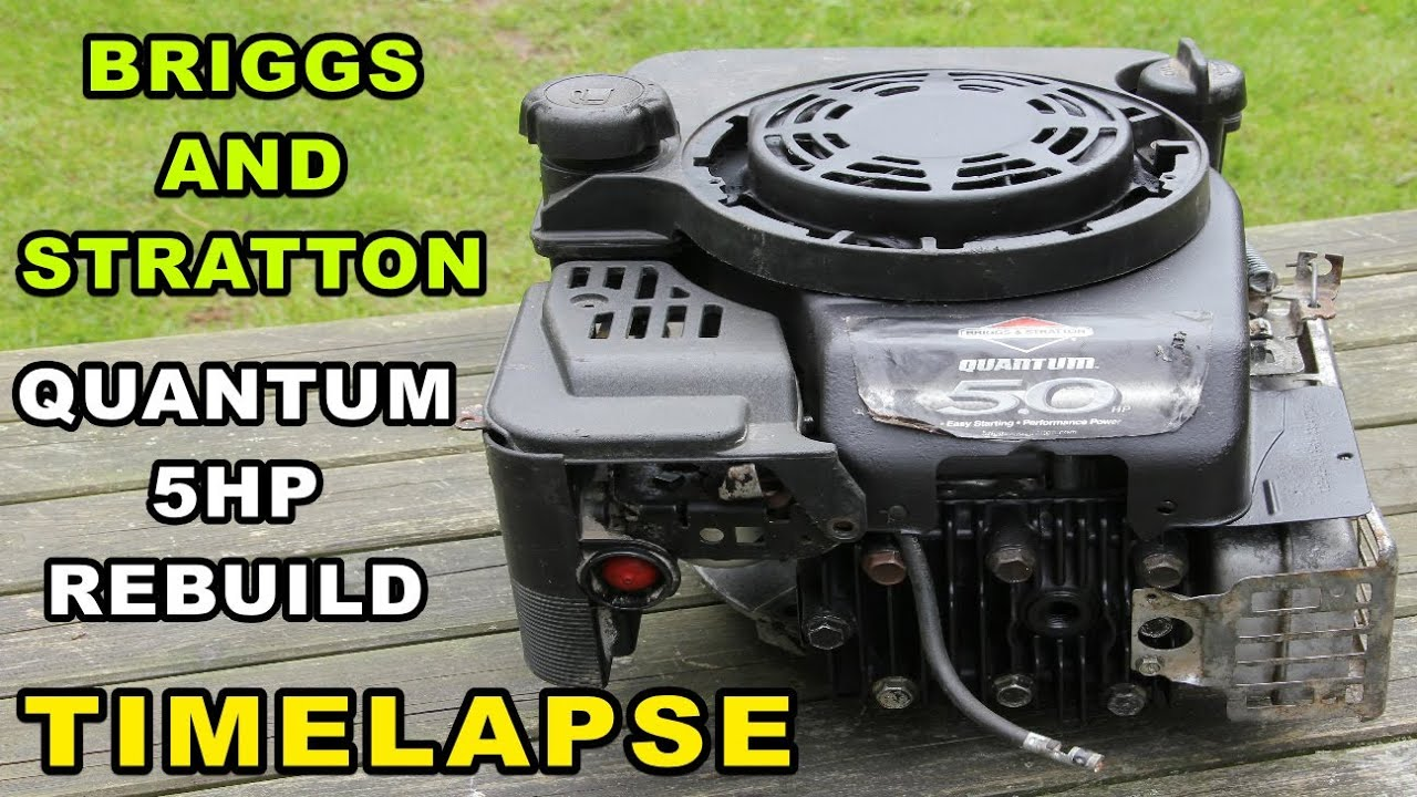 Briggs and stratton engine rebuild quantum 5hp small for Briggs and stratton 5hp motor