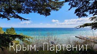 Крым Партенит обзор курорта пляжи рестораны парк санатория Крым и Айвазовского Крымские коты