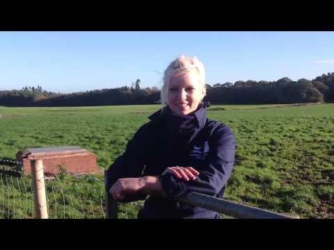 Northumberland Uplands On The Up  Lindsey Miller