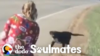 Dog Runs In Front Of Car And This Woman Knows It's Fate | The Dodo. Soulmates