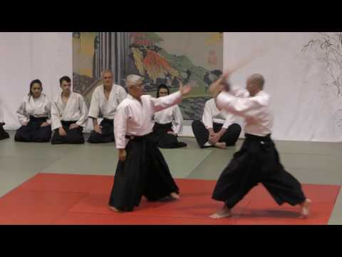 Gam2017 Aikido bis
