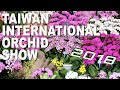 2018臺灣國際蘭展  Taiwan International Orchid Show 2018