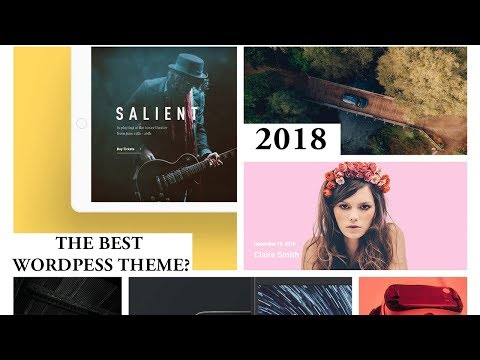 The Best Wordpress Theme Ever? (2018) [Salient Theme Review]