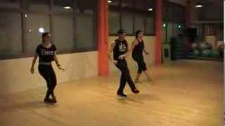 Work B**ch Britney Spears- Zumba choreo by Nektarios- Palmos fit dance