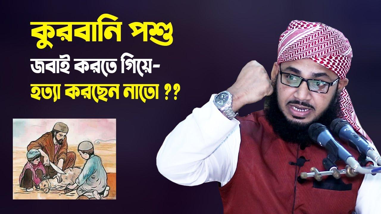 কুরবানির পশু জবাই করতে গিয়ে হত্যা করছেন নাতো ?? Habibullah Mesbah New Waz | Qurbanir Waz