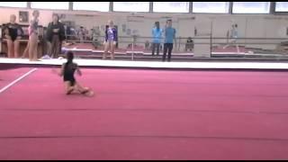 Спортивная гимнастика. Вольные упражнения