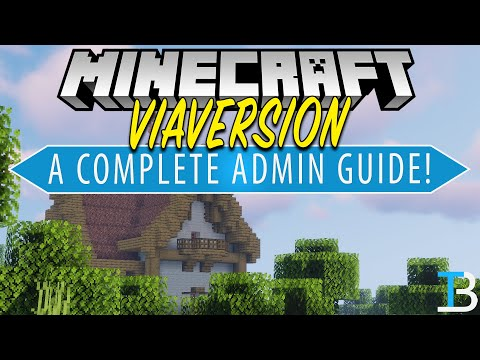 How To Allow Any Minecraft Version To Join Your Server (A Complete Guide To ViaVersion!)