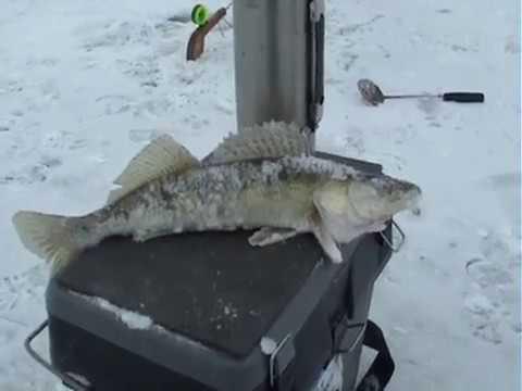 Зимняя рыбалка в Астрахани  Волга , Ахтуба