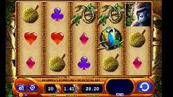 Amazon Queen Slot Game Online - Find The Best Casino Sites Online