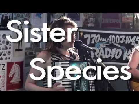 "Sister Species  ""Sun Arranging Light"" (Live on Radio K)"