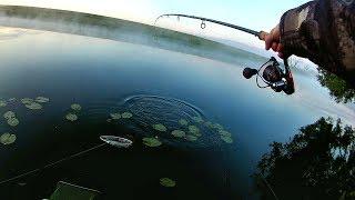 Ловля на фидер с ночёвкой на реке. Отличная рыбалка! (LiveFishing)