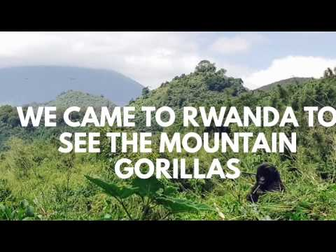 TRAVEL VLOG: Gorilla Trekking in Rwanda