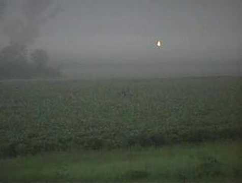 Big Bucks in Gallatin County Illinois