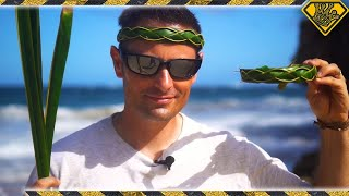 How To Make A Palm Leaf Headband