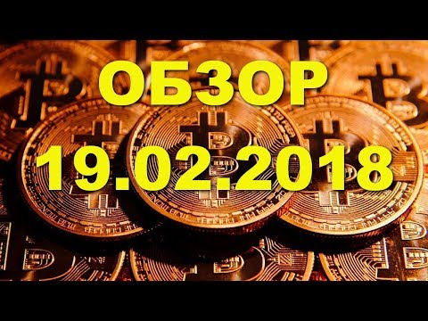 BTC/USD — Биткойн Bitcoin график цены на 19.02.2019 / 19 февраля 2019 года