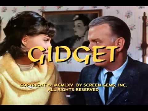Gidget Theme Song (show open).avi