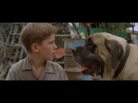 the sandlot 1993 the beast trapped!