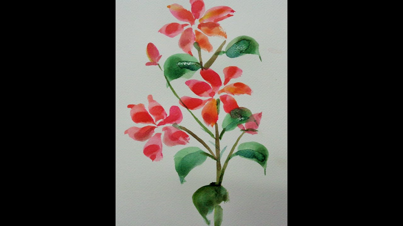 How To Draw Flowers   Draw A Jasmine Flower   YouTube How To Draw Flowers   Draw A Jasmine Flower