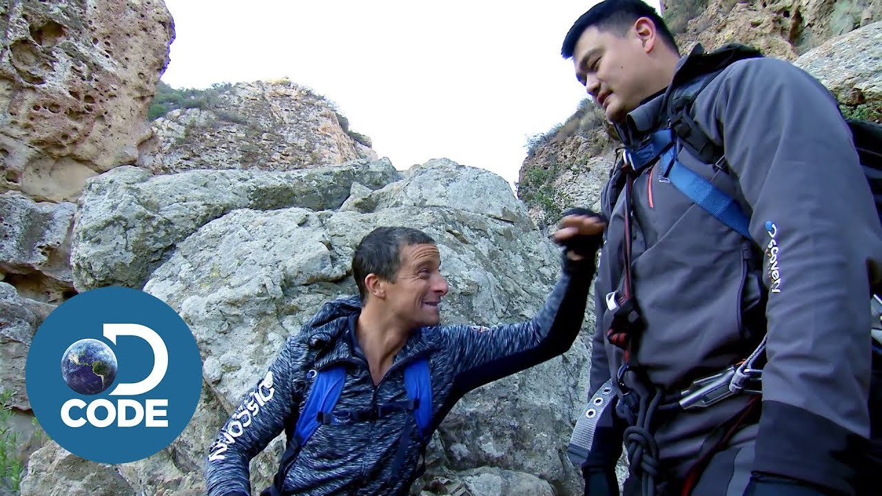 Download Bear Grylls and Yao Ming Go Wild