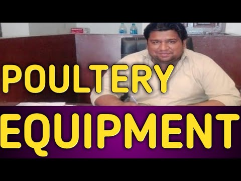 Poultry Equipment in Multan