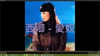 西卿 - 愛奴 (1982.09黃俊雄布袋戲--六合三俠傳)
