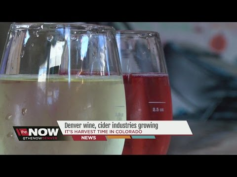 Denver wine, cider industries growing