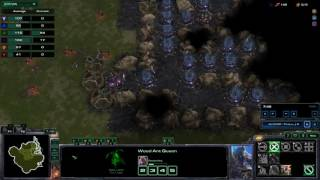 Starcraft 2 - Ant Colonies OA (9) Wood Ant vs 2 Fire Ants