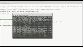JBoss EAP-7: Deploying Applications on Single and Multiple nodes with Clustering in Standalone Mode