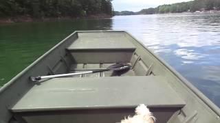 85 Johnson 15 HP on 1436 aluminum Jon boat.