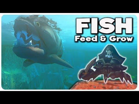Pirate Crab vs Crab King vs SHARK!   Feed and Grow Fish Gameplay Highlights