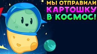 МЫ ОТПРАВИЛИ КАРТОШКУ В КОСМОС! - Holy Potatoes Were in Space