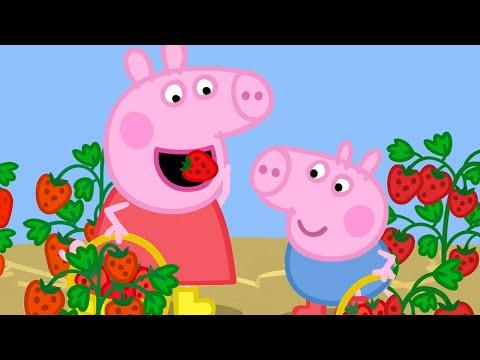 Peppa Pig en Español Episodios   PERFUME   Pepa la cerdita