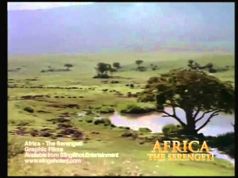 Africa the Serengeti Trailer.mp4