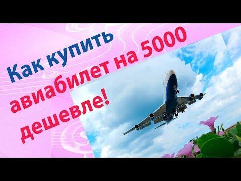 дешевые авиабилеты екатеринбург санкт-петербург