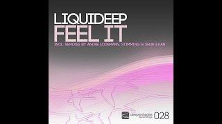liquideep-feel-it-andre-lodemann-remix-deeper-shades-recordings-deep-house-remix