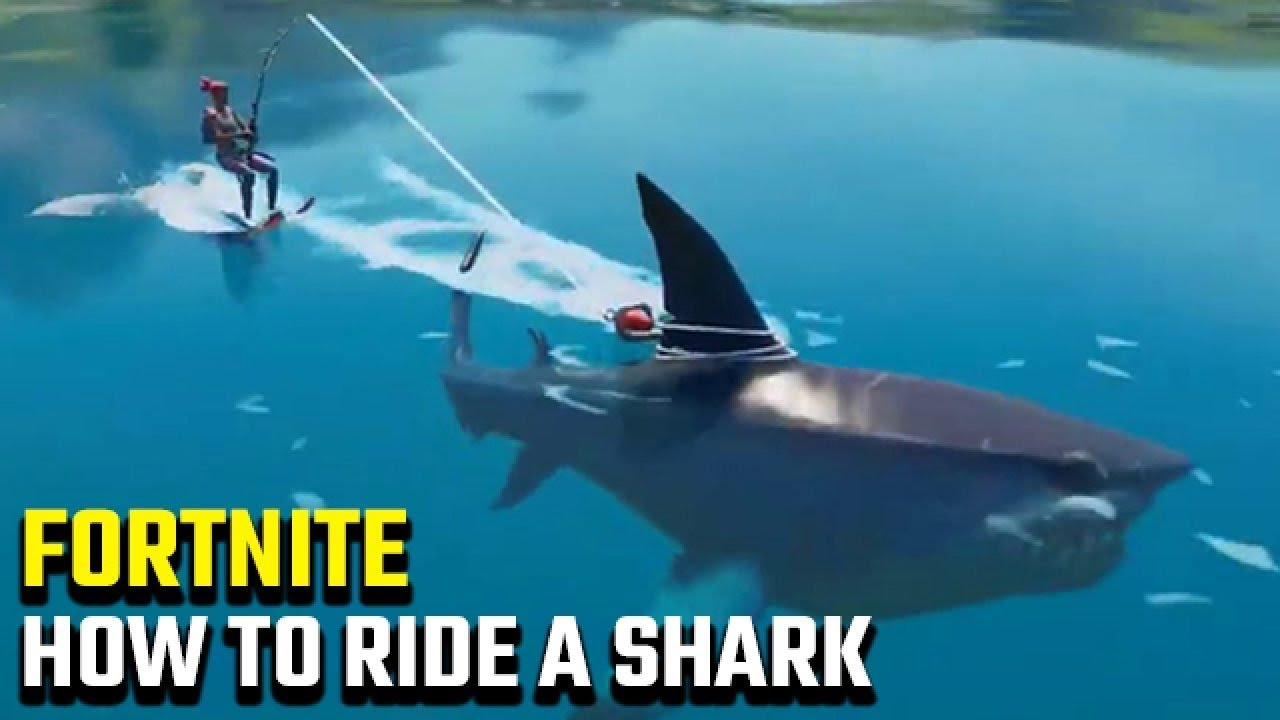 How to ride a shark in Fortnite! - YouTube