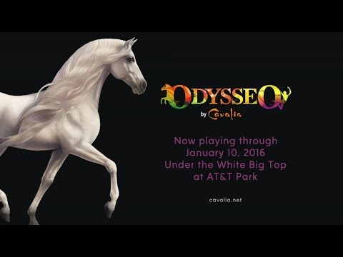 ABC7 Presents: Discover Odysseo by Cavalia