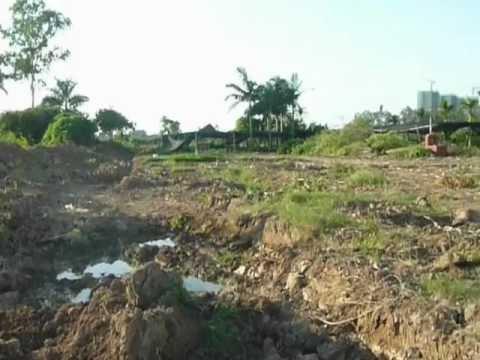 Xuân Quan - Văn Giang bới tìm xương cốt mồ mả bị đào xới