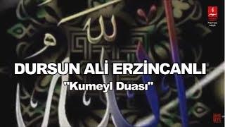 DURSUN ALİ ERZİNCANLI  \